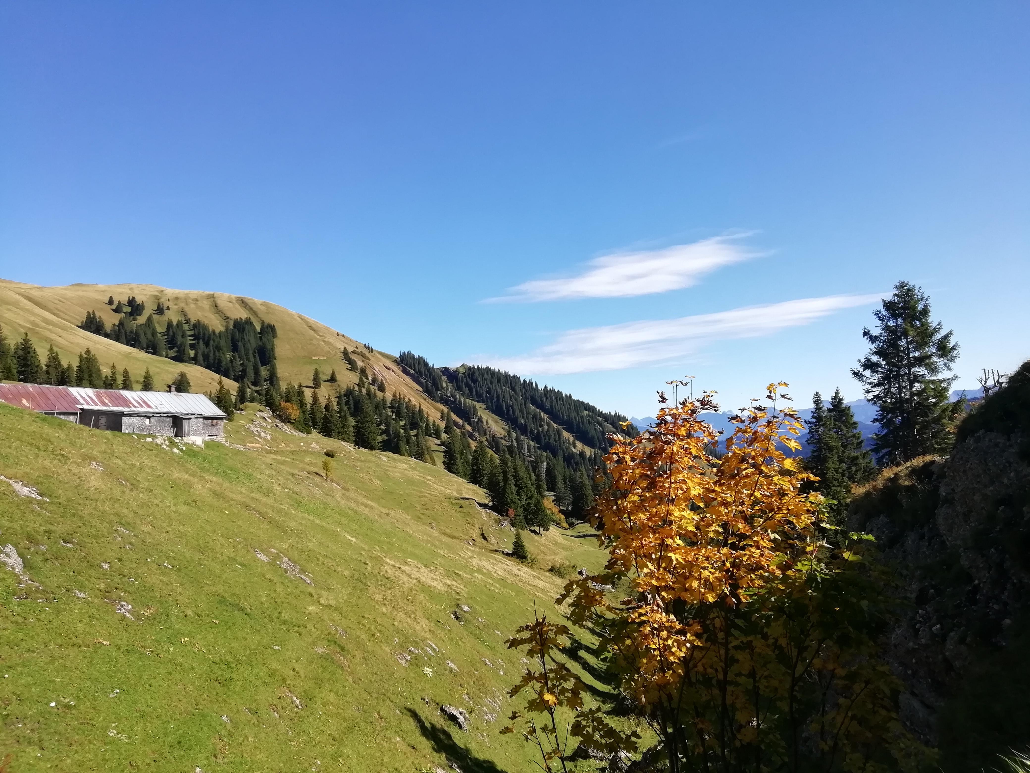 Goldener Oktober mit buntem Laub und warmer Sonne.
