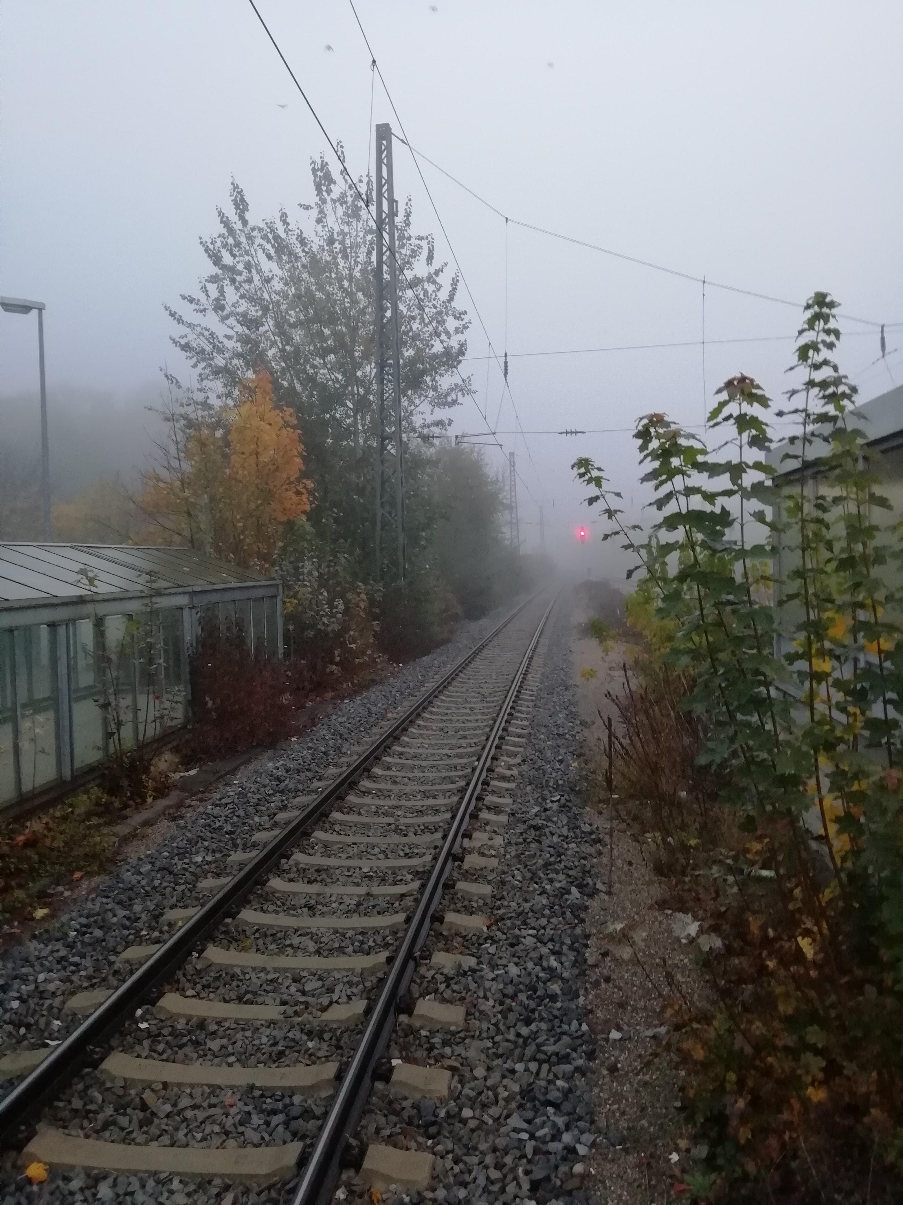 Nebel im Herbst ist keine Seltenheit.